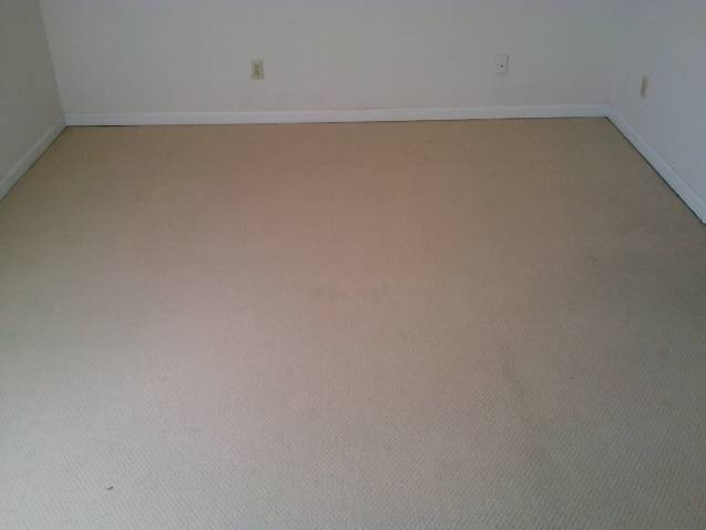 clean_carpet